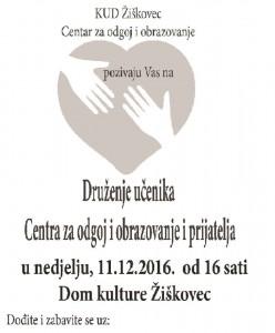 Druženje učenika Centra za odgoj i obrazovanje i prijatelja. Žiškovec. 11.12.2016. (5)